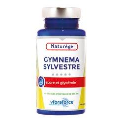 Gymnena Sylvestre