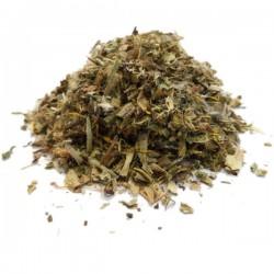 Plante Pissenlit Bio Feuille - Poids Net 35 g