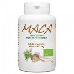 Maca Racine - 350 comprimés bio - GPH Diffusion