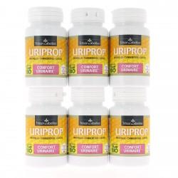 PACK PROMO x 6 URIPROP - 6 Piluliers de 60 Gélules - Trésor des abeilles