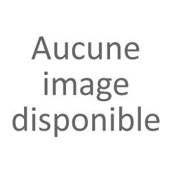 PLANTE ORANGER BIGARADE BOUTON